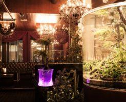六本木の会員制ラウンジ、エイチ(eichi)の店内画像